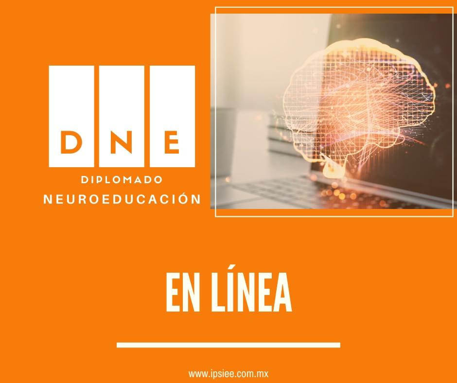 Diplomado en Neuroeducación En Línea